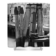 Family Of Pilings Shower Curtain