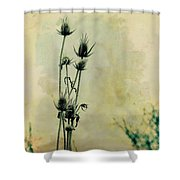 Family Of Teasels Shower Curtain