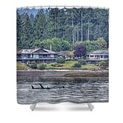 Family Outing - Orcas Shower Curtain by Randy Hall