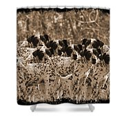 Family Portrait Before The Hunt-featured Picture In Large Dogs Only Group Shower Curtain