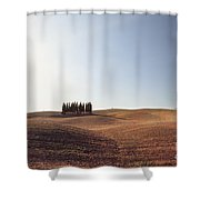 Famous Cypress Grove In Tuscany Shower Curtain