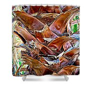 Fan Palm Trunk In Andreas Canyon In Indian Canyons-ca Shower Curtain