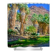 Fan Palms By The Creek In Lower Palm Canyon In Indian Canyons Near Palm Springs-california Shower Curtain