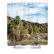 Fan Palms Line The Creek In Andreas Canyon In Indian Canyons-ca Shower Curtain