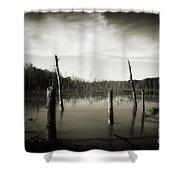 Fancher Davidge 2 Shower Curtain
