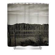 Fancher Davidge 3 Shower Curtain
