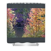 Fanciful Forest Shower Curtain