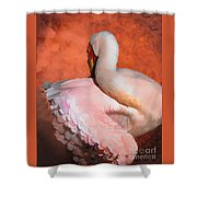 Fancy Dancer Shower Curtain by Melinda Hughes-Berland