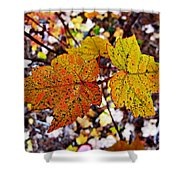 Fancy Fall Leaves Shower Curtain