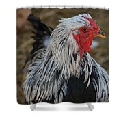 Fancy Rooster Shower Curtain