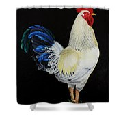 Fancy Tail  Rooster Shower Curtain
