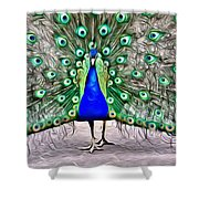 Fanning Peacock Shower Curtain