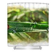 Fantastic Dew Shower Curtain