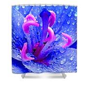 Fantasy Flower 6 Shower Curtain