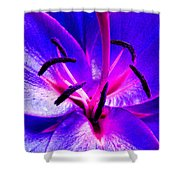 Fantasy Flower 9 Shower Curtain