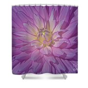Fantasy In Pink Shower Curtain