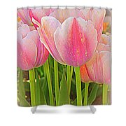Fantasy In Pink - Tulips Shower Curtain