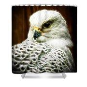 Fantasy White Falcon Shower Curtain