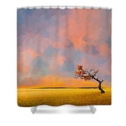 Far Away Sunset With Old Tree Shower Curtain