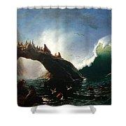 Farallon Island Shower Curtain