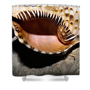 Faraway Places Shower Curtain