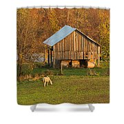 Farm At Sunrise Shower Curtain