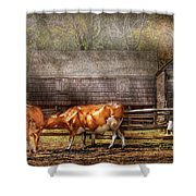 Farm - Cow - A Couple Of Cows Shower Curtain by Mike Savad