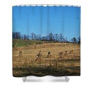 Farm Days Shower Curtain