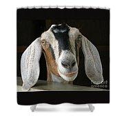 Farm Favorite Shower Curtain