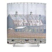 Farm Fed Shower Curtain