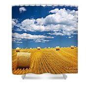 Farm Field With Hay Bales Shower Curtain by Elena Elisseeva