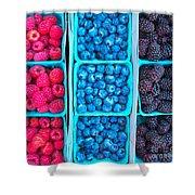 Farm Fresh Berries - Raspberries Blueberries Blackberies Shower Curtain