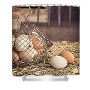 Farm Fresh Eggs Shower Curtain