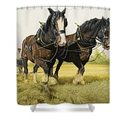 Farm Horses Shower Curtain