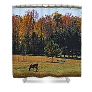 Farm Journal - Grazing Shower Curtain