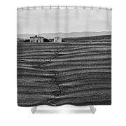 Farm Sienna Shower Curtain by Hugh Smith
