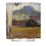 Farm With Large Gum Tree Shower Curtain