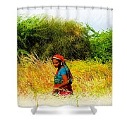 Farmers Fields Harvest India Rajasthan 2a Shower Curtain