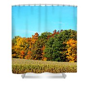 Farmfield Fall Shower Curtain