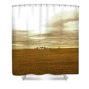 Farmhouse Island Shower Curtain