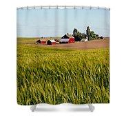 Farmlands Near Davenport Shower Curtain