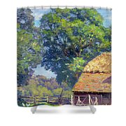 Farmyard With Poultry Shower Curtain