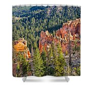 Farview Point Overlook Shower Curtain