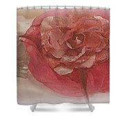 Fascinator Hats In White And Rose Shower Curtain
