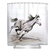 Fast In The Spirit Shower Curtain by Tamer and Cindy Elsharouni