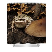 Fat Frog Shower Curtain by Jean Noren