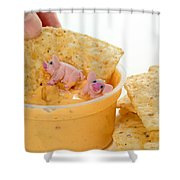 Fat Pigs 3 Shower Curtain