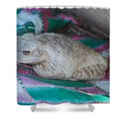 Fat Treefrog Shower Curtain