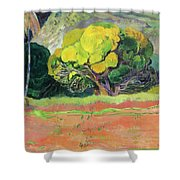 Fatata Te Moua Shower Curtain