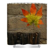 Faux Leaf Shower Curtain